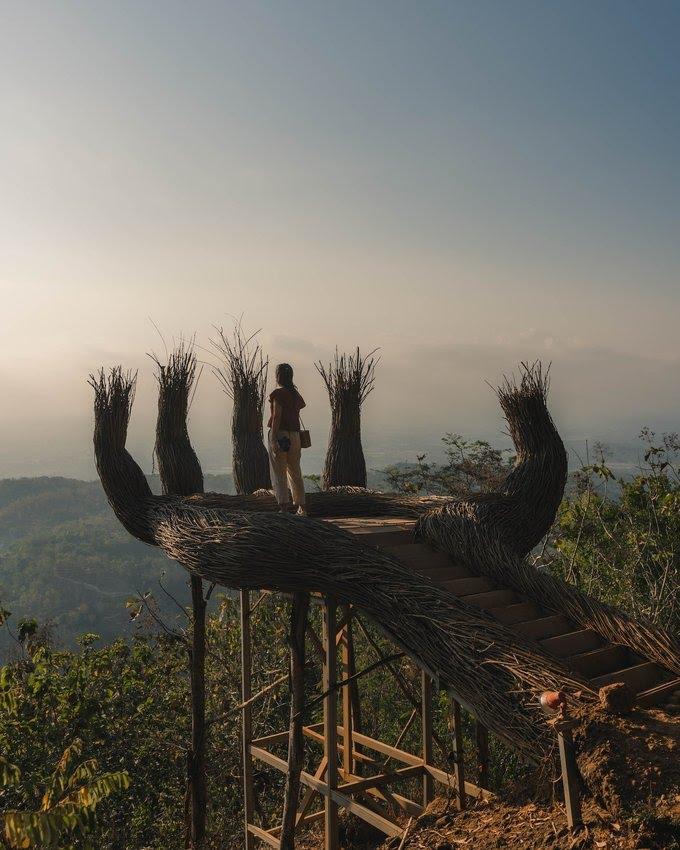 Hutan Pinus Pengger - Tempat Wisata di Jogja (3)