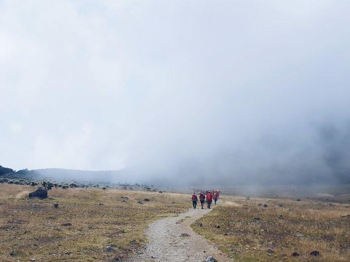 Jalur Hiking Gunung Gede